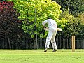 Nuthurst CC v. The Royal Challengers CC at Mannings Heath, West Sussex, England 21.jpg
