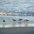 Oceanside, California 05.jpg