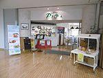 Odate Noshiro Airport2016-7-16-3.jpg