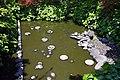 Ofusa-kannon Kashihara Nara pref Japan15s3.jpg