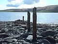 Old Fenceposts On The Shoreline - geograph.org.uk - 765354.jpg
