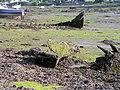 Old wrecks in Llangwm Pill. - geograph.org.uk - 912669.jpg