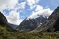 On the way to Milford Sound 10 (31632661885).jpg
