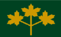 Ontario flag proposal 3 gold ML on green.png