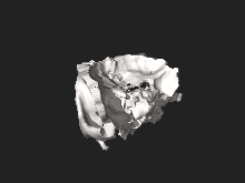 Orbit of the Face, STL file processed 1.0.0