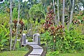 Orchid Garden Bali Indonesia - panoramio (12).jpg