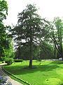 Ostafyevo park-2.JPG