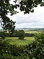 Over the hedge - geograph.org.uk - 490041.jpg