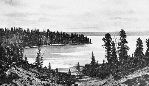 PSM V47 D191 Shoshone lake north shore.jpg