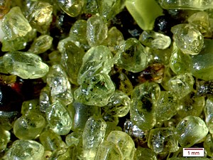 Olivine - Olivine grains which eroded from lava on Papakolea Beach, Hawaii