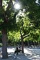 Parc Georges Brassens @ Paris (35056280062).jpg