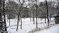 Parc de Bois-Préau sous la neige - panoramio (4).jpg