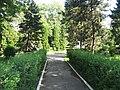 Parcul Areni1.jpg