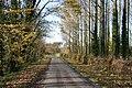 Park Farm lane - geograph.org.uk - 1055158.jpg