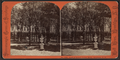 Park of Grand Union Hotel, Saratoga, N.Y, by Hall Bros. 2.png