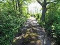 Path from Harbor MBTA station, May 2012.JPG