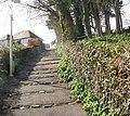 Path to North Hill, Minehead - geograph.org.uk - 1765602.jpg