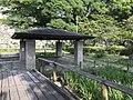 Pavilion in Iris Garden of Maizuru Park.jpg