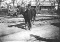 Peón y caballo de tranvías (Agosto ).png