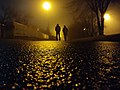 People in the street light.jpg