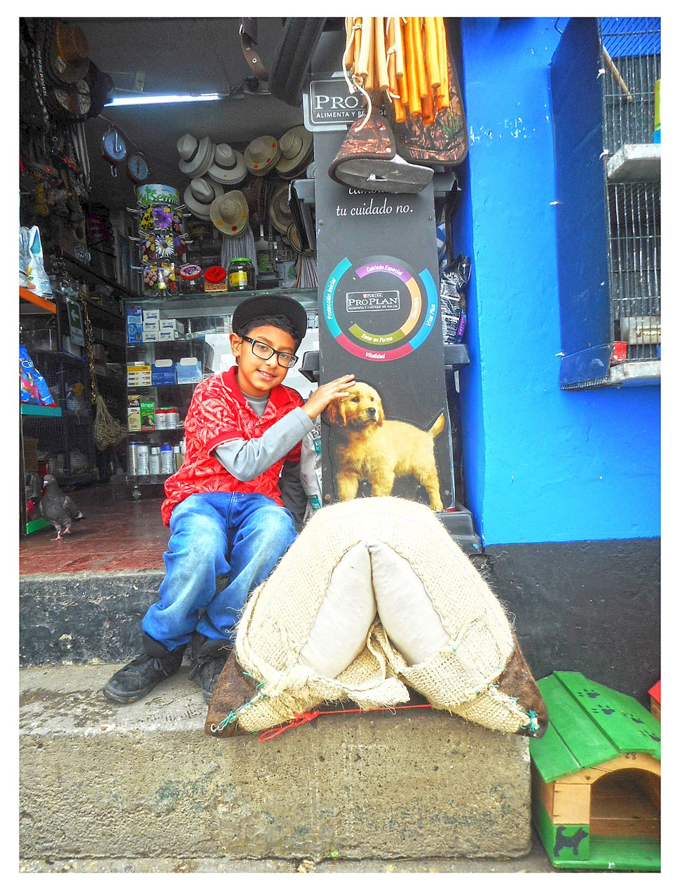 Photographic Illusions - Daniel Di Palma - Boy with cardboard dog 01