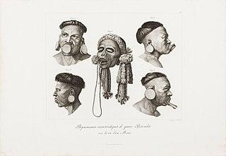 Physionomies caractéristiques de quatre Botocudes avec la tête d´une Momie