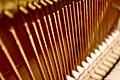 Piano (3042845496).jpg