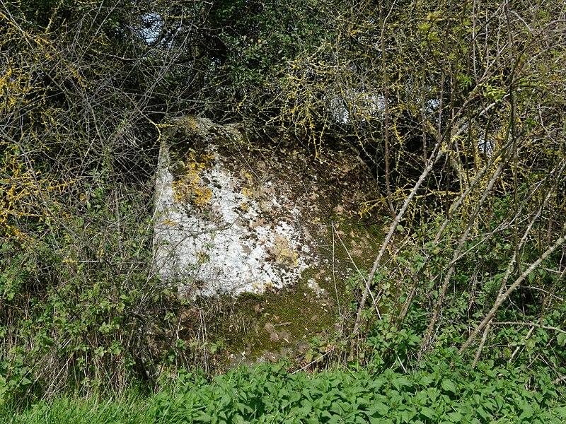 Pierre levée recouverte de broussailles à proximité de la Croix Fête de Diant en Seine-et-Marne, dans la région Île-de-France.