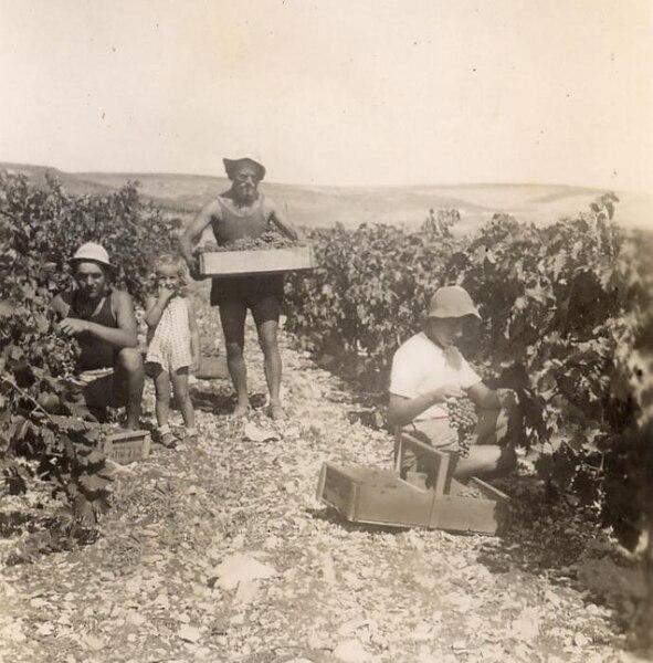 בציר ברמת השניים - 1940