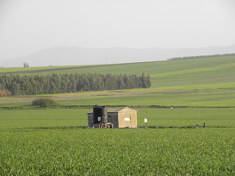 תמונת נוף בעמק יזרעאל