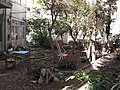PikiWiki Israel 991 a garden in town גינה בעיר.JPG