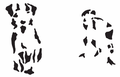Pixel-precepce-A002.png