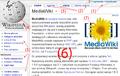 Pl Wikipedia Ekran gora.png
