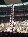 Plaça de Braus de Tarragona - Concurs 2012 P1410276.jpg