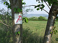 Pointalphaweg3.jpg