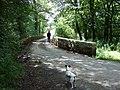 Pont Mynachclogddu - geograph.org.uk - 1407418.jpg