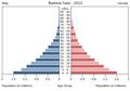 Population pyramid of Burkina Faso 2013.png