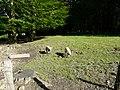 Porcs al coll d'Ezcurra P1270470.jpg