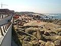 Praia de Lavadores - Portugal (359398984).jpg