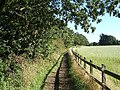Public footpath from Frankby Road to Montgomery Hill - geograph.org.uk - 45929.jpg