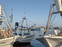 Puerto de La Caleta.jpg