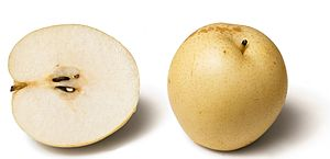 "Pear - Many varieties, such as the Nashi pear, are not ""pear-shaped"""