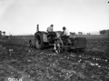 Queensland State Archives 1678 Potato digger harvesting Sebago potato crop 100120 bags to acre c1951.png