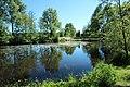 Réserve naturelle régionale des étangs de Bonnelles le 26 mai 2017 - 14.jpg