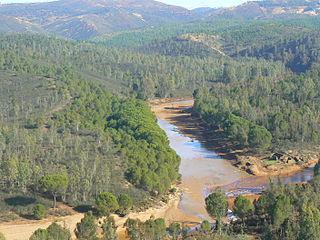 Odiel river in Spain