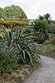 RHS Garden Hyde Hall, Essex, England - garden path 02.jpg