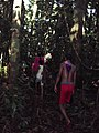 RIBEIRINHOS NA SELVA - panoramio.jpg