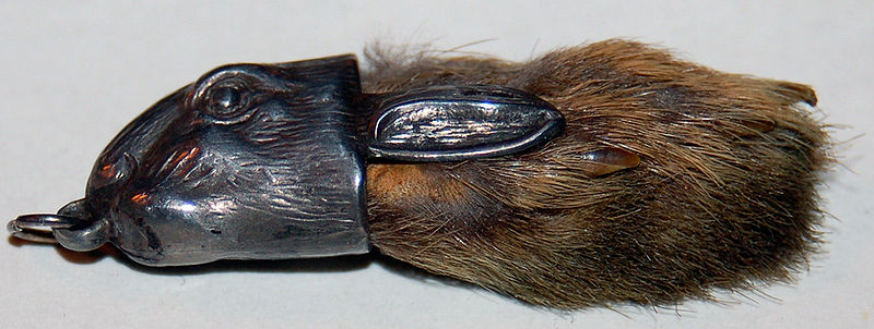 File:Rabbitsfoot.jpg