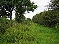 Railway trackbed near Shipton Lee 3 - geograph.org.uk - 934929.jpg