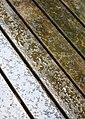 Rain on wooden floor.jpg